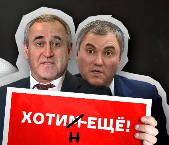 «Гаврилыч, раскрой кошелёк!» Почему скандальный депутат Госдумы Николай Брыкин костьми лёг за интересы миллиардера Алексея Хотина